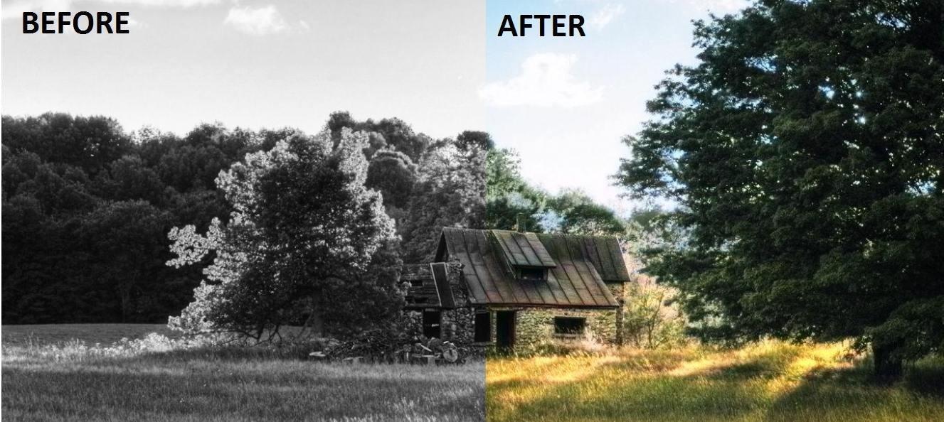 Colorize Black and White Photos using Pixbim Color Surprise AI
