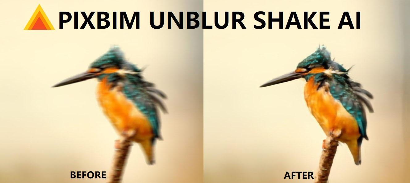 Unblur an Image using Pixbim Unblur Shake AI
