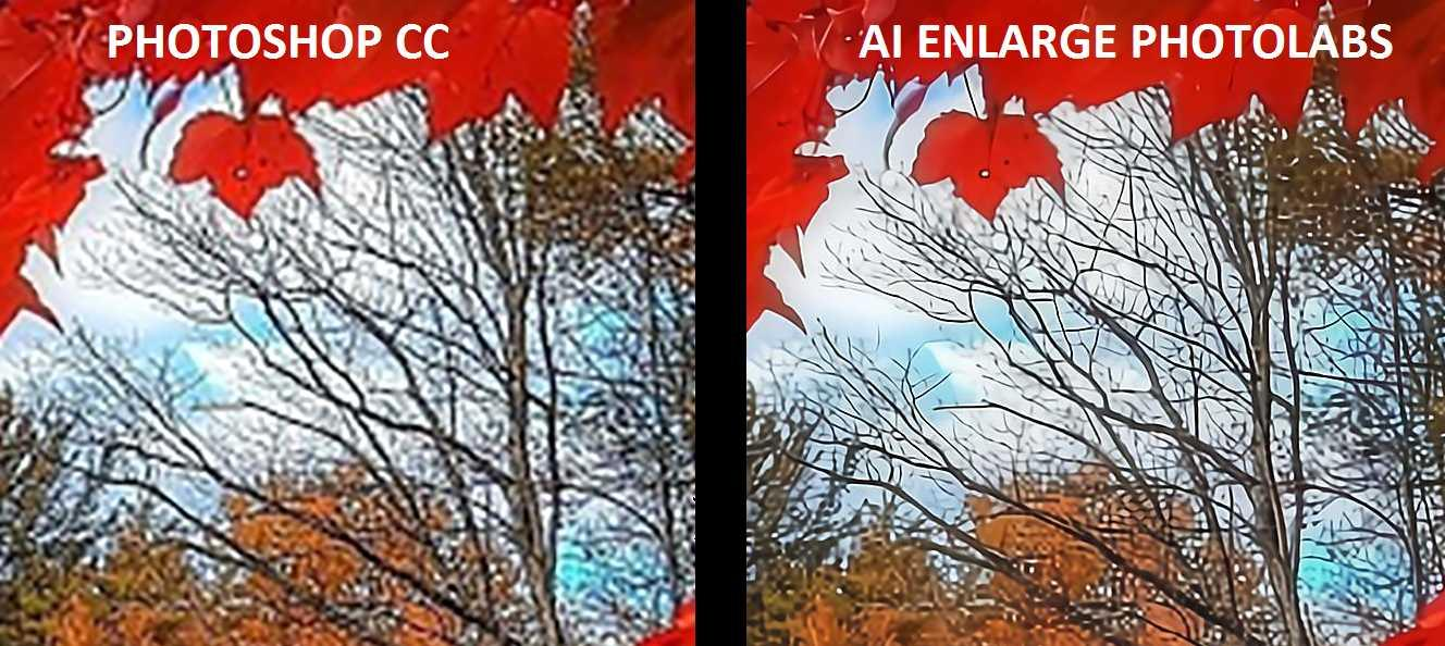 comparison between high quality photoshop and high quality AI Enlarge photos
